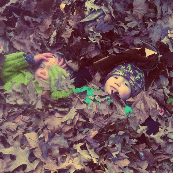Hiding in a bed of leaves